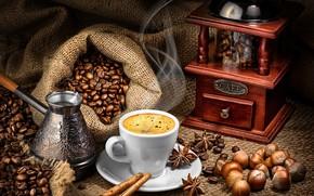 Picture coffee, food, grain, Cup, still life, cinnamon, Turk, coffee grinder