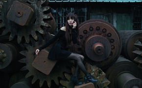 Picture girl, metal, face, style, hair, dress, rust, legs