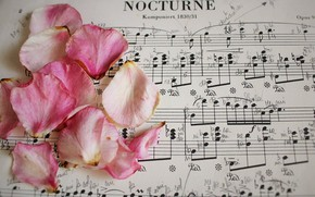 Picture notes, music, roses, petals