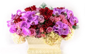 Picture flowers, roses, bouquet, orchids, composition