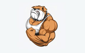 Picture dog, mouth, fangs, muscle, biceps