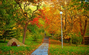 Picture Autumn, Trees, Park, Fall, Foliage, Track, Park, Autumn, Colors, Trees, Leaves, Path