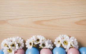 Picture Easter, eggs, Holiday, chrysanthemum