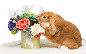Picture flowers, rabbit, Easter, happy, rabbit, flowers, spring, Easter, eggs, bunny, decoration