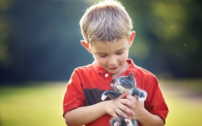 Picture boy, kitty, friends, baby