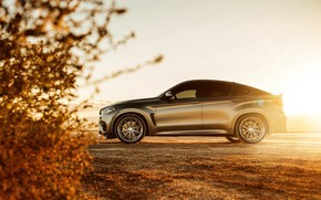 Picture nature, design, BMW X6M