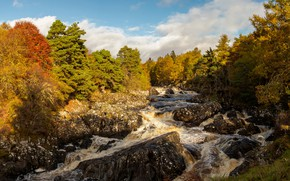 Wallpaper stones, autumn, river, the sun, forest, Scotland, clouds, River Cassley, trees