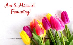 Picture flowers, holiday, bouquet, tulips, March 8, women's day