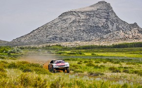 Picture Grass, Mountain, Sport, Rock, Speed, Race, Dirt, Peugeot, Lights, Red Bull, Rally, Rally, Sport, Overcast, …