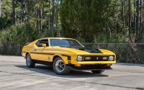 Picture Ford Mustang, Fastback, Yellow, Muscle car, 1972, Mach 1