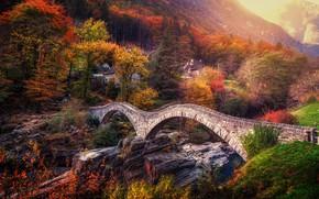 Picture autumn, trees, bridge, Switzerland, Alps, Switzerland, Alps, Ticino, Ticino, Lavertezzo, Ponte dei Salti, Verzasca River, …