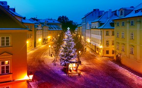 Picture road, trees, lights, holiday, new year, home, Christmas, the evening, Prague, Czech Republic, lights, tree, …