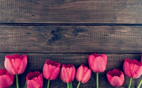 Picture flowers, bouquet, tulips, wood, pink, romantic, tulips, spring, pink tulips
