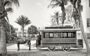 Wallpaper retro, Palma, FL, USA, 1903-the year, Conca