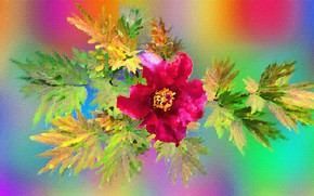 Picture Graphics, Flowers, Kolory
