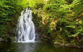 Wallpaper water, trees, nature, stones, waterfall