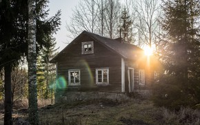 Picture forest, light, house, morning