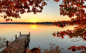 Wallpaper forest, river, branches, the sun, pier, autumn, leaves, dawn, trees