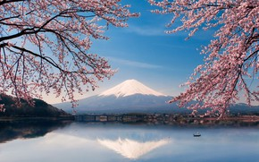 Wallpaper spring, Sakura, water, lake, Japan, mount Fuji, boat, flowers, Fuji