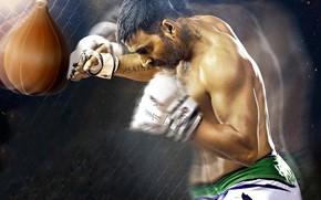 Wallpaper cinema, film, sport, Brothers, boxe, Akshay Kumar, movie, fighter, gloves, man