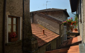 Picture Home, The city, Roof, Italy, Windows, Italy, Italia, Town, Old city