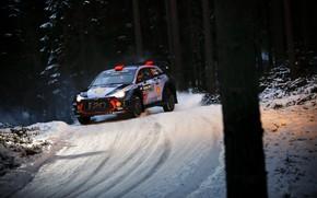 Picture Winter, Auto, Snow, Forest, Sport, Machine, Race, Hyundai, Car, WRC, Rally, Rally, i20, Dani Sordo, …