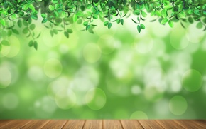 Wallpaper green background, light, foliage, Board, bokeh
