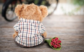 Picture love, flowers, toy, roses, bouquet, bear, love, bear, romantic, teddy, roses, cute, lonely