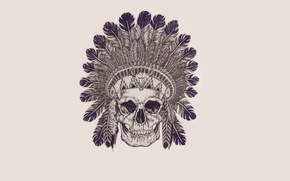 Picture skull, feathers, skeleton, sake, Indian, indian