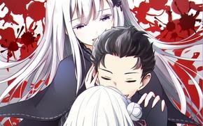 Picture anime, art, witch, Subaru, Emilia, Re: Zero kara hajime chip isek or Seikatsu, From scratch