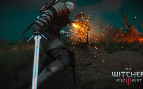 Picture the Witcher, Geralt of rivia, the Witcher 3: wild hunt, Emmerich