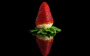 Picture reflection, strawberry, berry