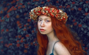 Picture look, girl, portrait, wreath