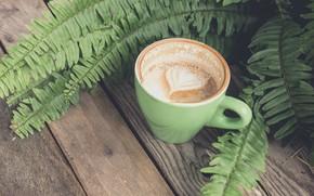 Picture heart, foam, capuchino, fern leaves