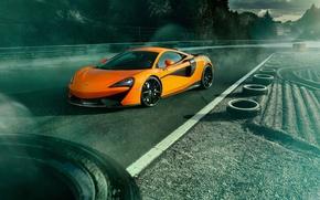 Picture road, auto, McLaren, Orange, Novitec, 570S