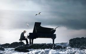 Picture wave, seagulls, piano, pianist, Vincent Bourilhon, The Ocean Symphony