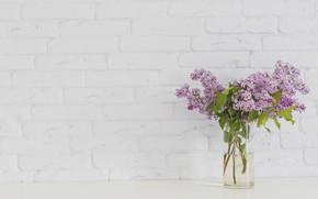 Picture Flowers, Vase, Bouquet, Lilac