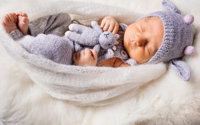 Picture dream, toy, sleep, baby, cocoon, cocoon, baby, baby