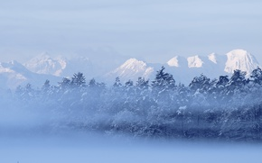Picture winter, forest, mountains, nature, fog