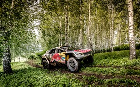 Picture Forest, Sport, Speed, Race, Dirt, Peugeot, Birch, Lights, Red Bull, Rally, Rally, Sport, DKR, 3008, …