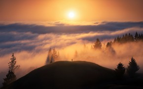 Picture USA, forest, sky, photography, trees, landscape, nature, California, clouds, sun, fog, hills, men, silhouette, mist, …