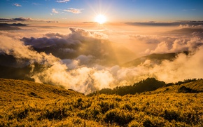 Picture forest, the sky, grass, the sun, clouds, rays, light, landscape, mountains, nature, fog, dawn, the ...