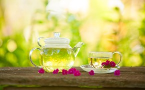 Picture flowers, drink, green, tea