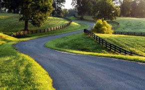 Picture road, nature, winding road