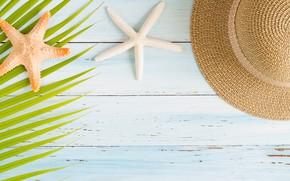 Picture sea, Palma, vacation, hat, starfish, sea