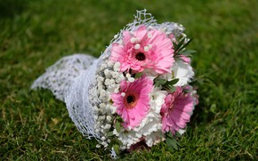 Picture flowers, chamomile, bouquet, gerbera