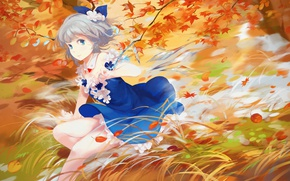 Picture autumn, grass, leaves, the wind, touhou, art, blue dress, Cirno, Touhou Project, Project East, ice ...