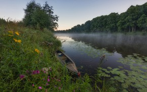 Picture summer, grass, trees, flowers, river, boat