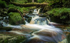 Picture forest, grass, trees, river, for, waterfall, hdr