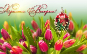 Picture flowers, holiday, egg, Easter, tulips